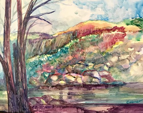 Painting Hickory Nut Gorge at Chimney Rock at