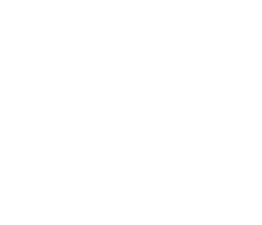 Cynthia Llanes Logo