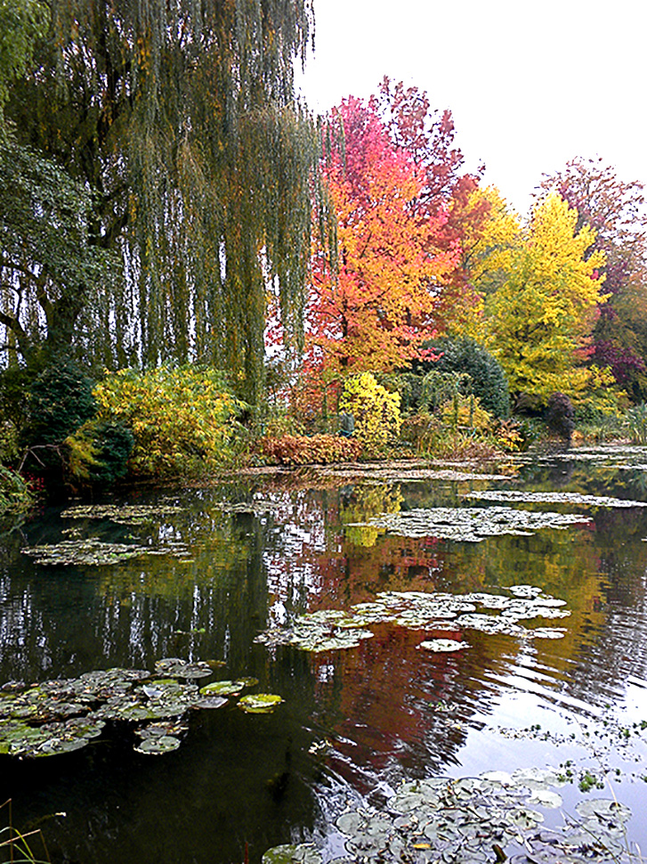 Monet's garden was his inspiration for his painting series of ponds and waterlilies